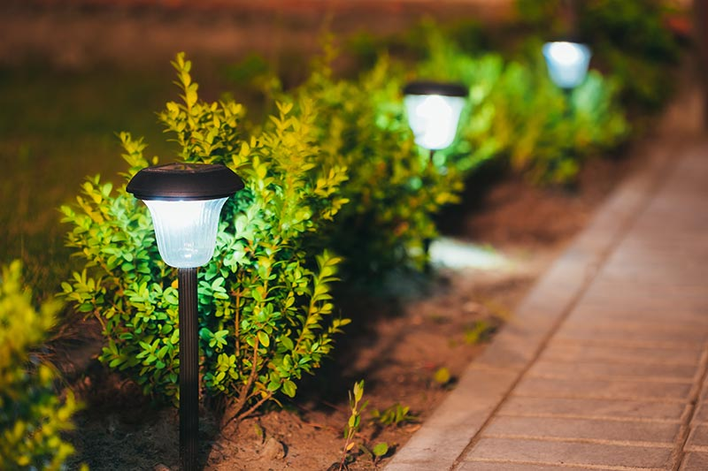 Backyard Light Ideas