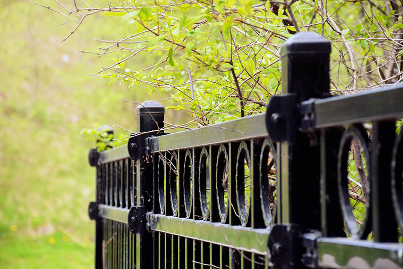 Everything You Need To Know About Fences