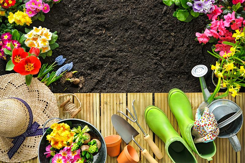 Starting a Garden on Your Patio Enclosure